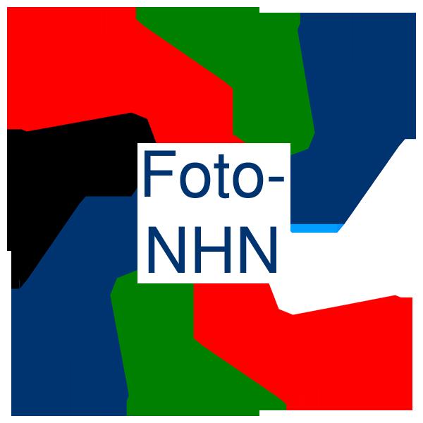 Foto Noord-Holland Noord